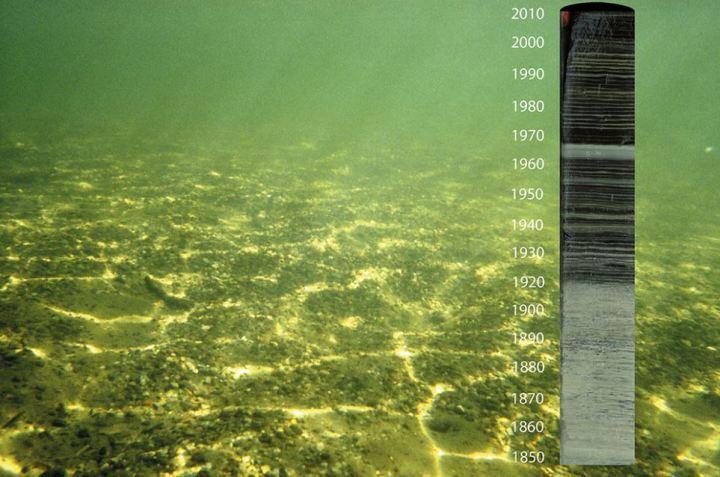 ubanization-sediment-lakes