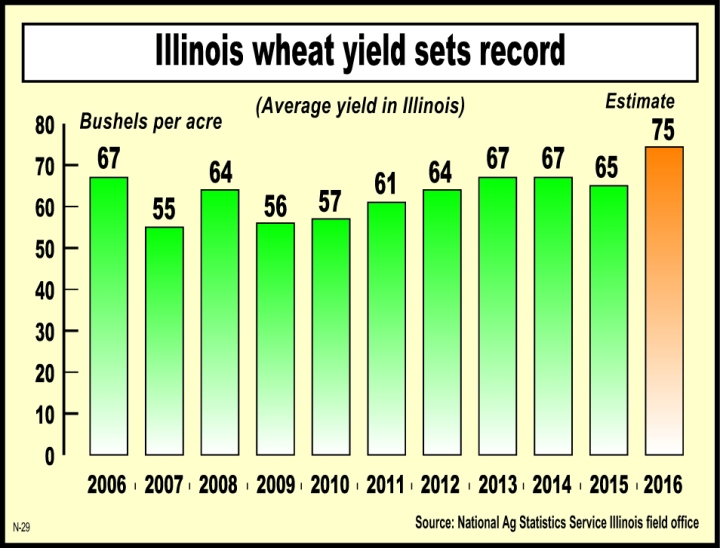 illinois_state_national_wheat_yields_thrash_existing_records