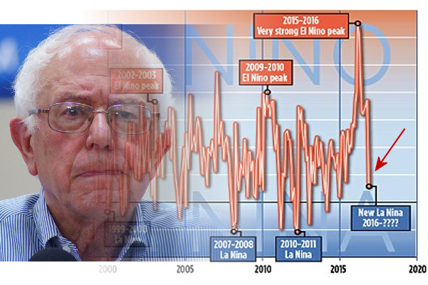 Temperature Graph David Rose + Bernie Photo.