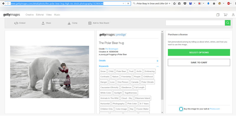 polar_bear_gertty_images_pa