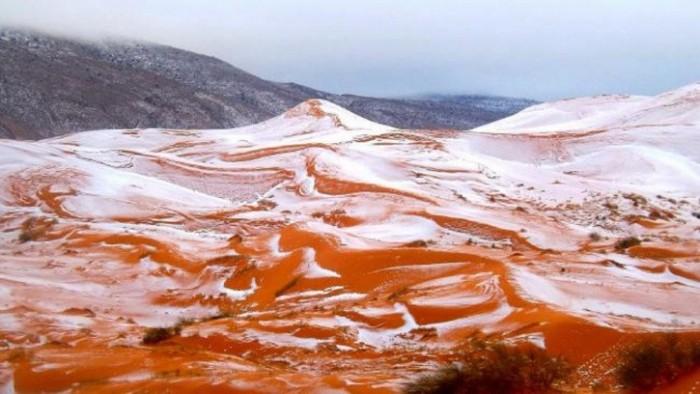 sahara-snowfall