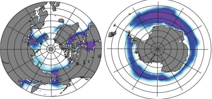 The Southern Hemisphere has a higher capacity to grow sea ice than the Northern Hemisphere, where continents block growth. New research shows that the expansion of Southern Hemisphere sea ice during certain periods in Earth's orbital cycles can control the pace of the planet's ice ages. CREDITJung-Eun Lee / Brown University