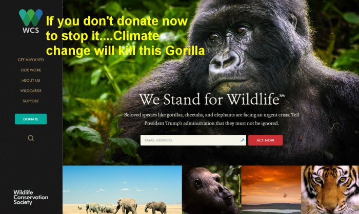 climate-kill-the-gorilla1