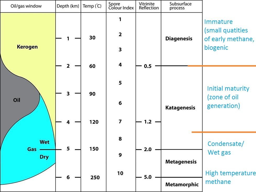 petroleum-maturation-kerogen-oil-gas