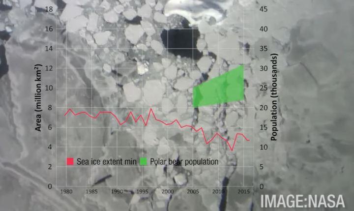 sea-ice-vs-polarbear-population