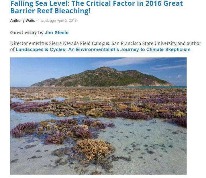 coraline critical essay