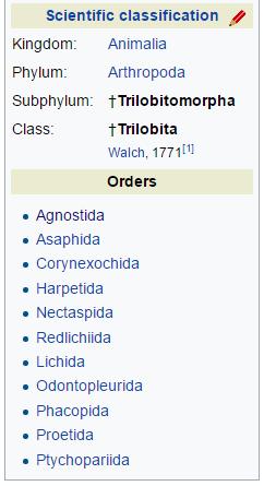 Trilobite_2