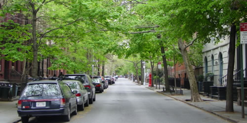 -climate-change-accelerates-growth-in-trees-especially-urban-ones