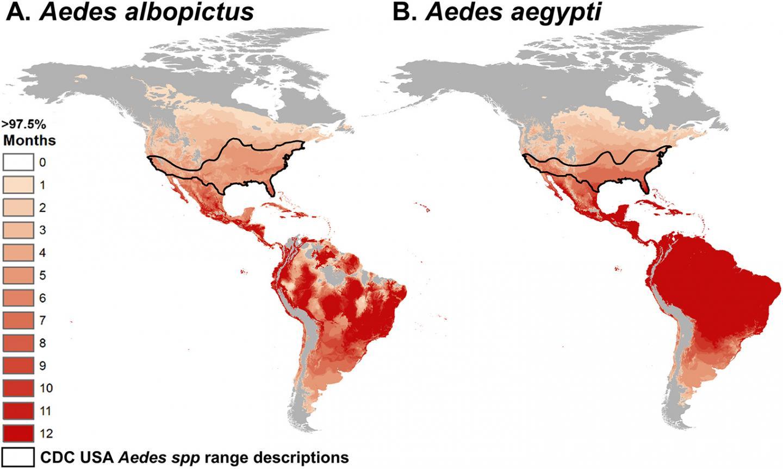 Study Zika Virus Transmission Isnt As Dependent On Warmer - Zika virus map usa states
