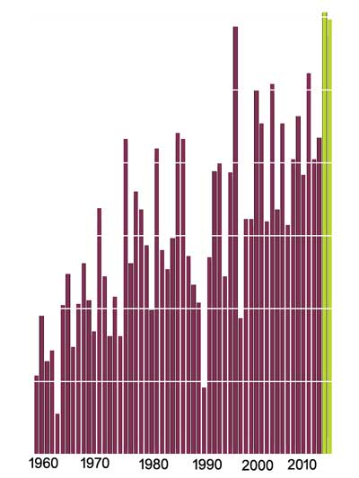 NYTimes_graph