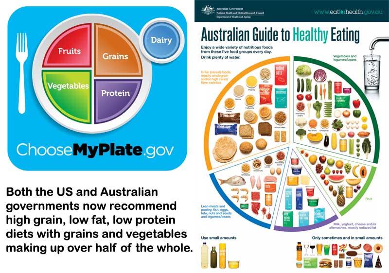 food_plates