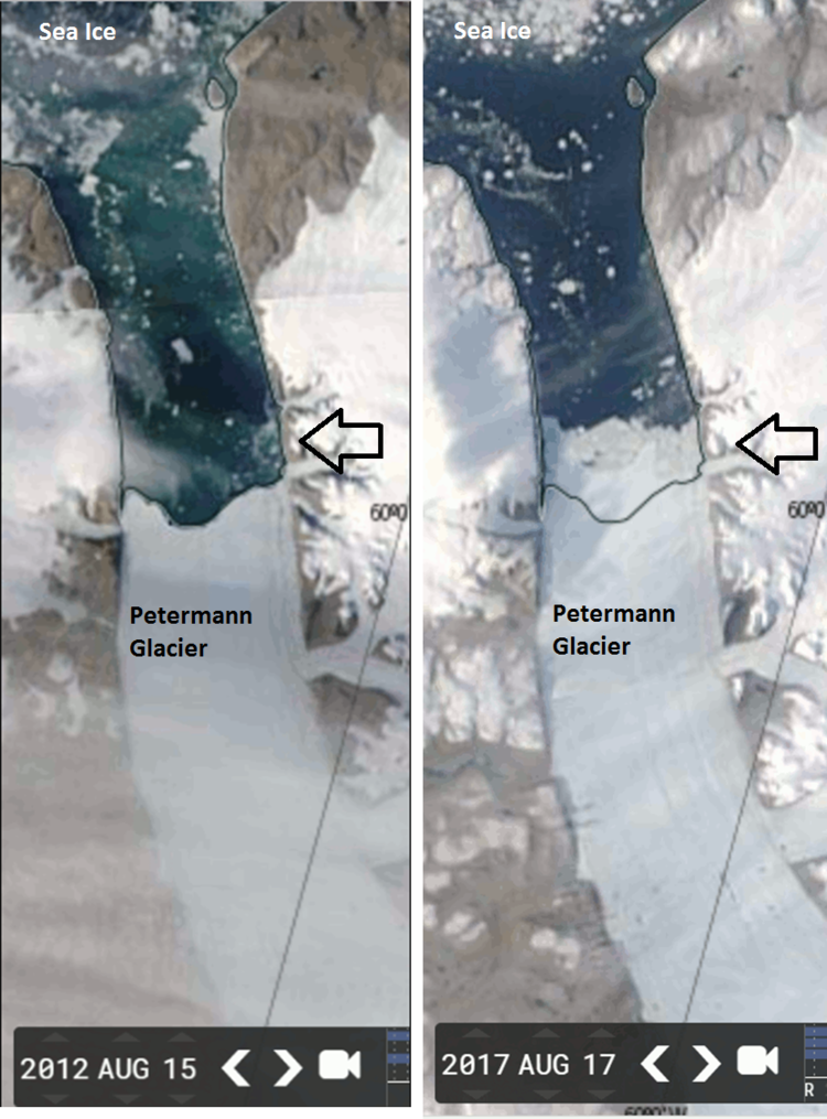 60793386046 Growth of Greenland's Petermann Glacier during the past five years as  revealed by NASA/MODIS satellite imagery from a low point in August 2012  (left) to ...