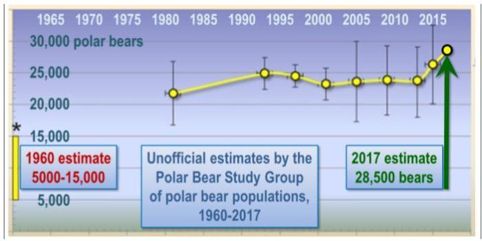 A conversation with Dr  Willie Soon – on polar bears, the